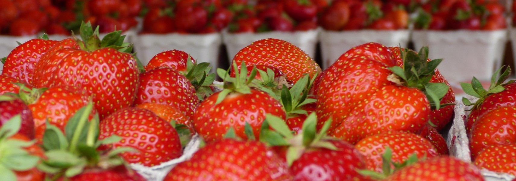Leuchtend rote Erdbeeren am Verkaufsstand in Partenfeld